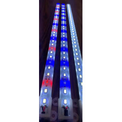 Aqualight LED skinne 50cm...