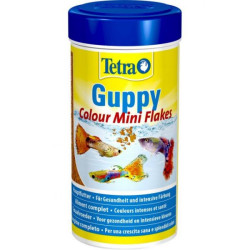 Tetra Guppy Colour mini...